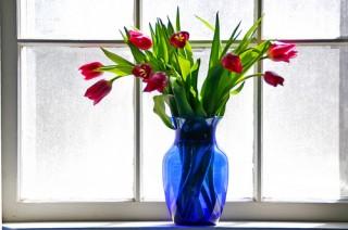 jarra-flores