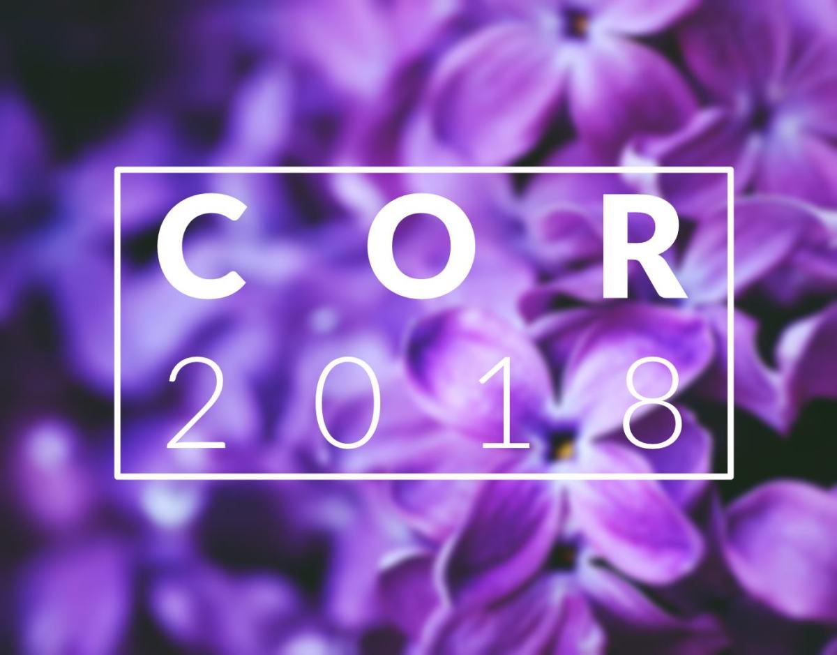A COR DE 2018 | ULTRAVIOLETA PANTONE