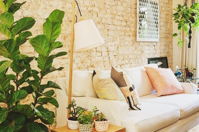 sala-com-plantas-decoracao-sala-branca